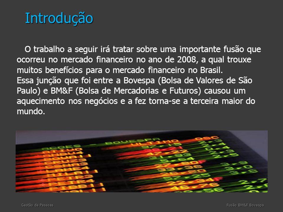 O trabalho a seguir irá tratar sobre uma importante fusão que ocorreu no mercado financeiro no ano de 2008, a qual trouxe muitos benefícios para o mercado financeiro no Brasil.