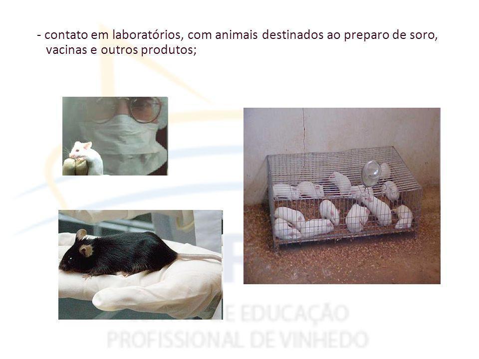 - contato em laboratórios, com animais destinados ao preparo de soro, vacinas e outros produtos;