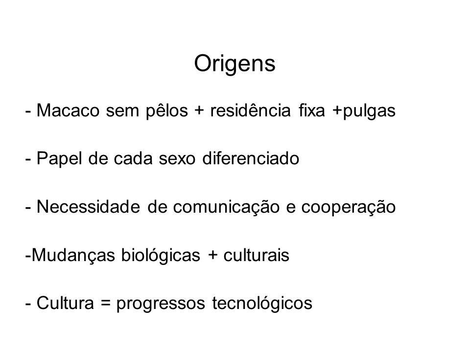 Origens - Macaco sem pêlos + residência fixa +pulgas - Papel de cada sexo diferenciado - Necessidade de comunicação e cooperação -Mudanças biológicas