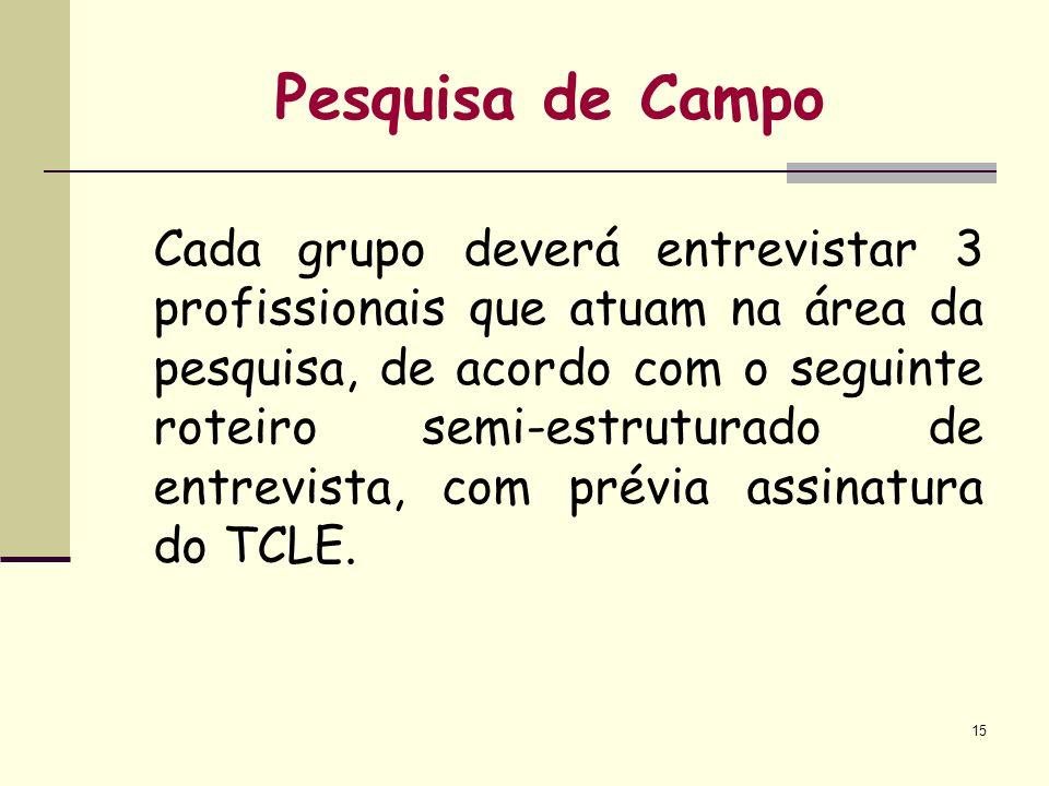 15 Pesquisa de Campo Cada grupo deverá entrevistar 3 profissionais que atuam na área da pesquisa, de acordo com o seguinte roteiro semi-estruturado de