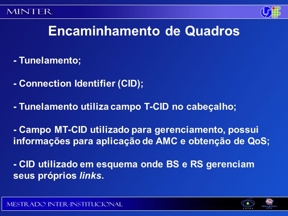 - Tunelamento; - Connection Identifier (CID); - Tunelamento utiliza campo T-CID no cabeçalho; - Campo MT-CID utilizado para gerenciamento, possui informações para aplicação de AMC e obtenção de QoS; - CID utilizado em esquema onde BS e RS gerenciam seus próprios links.