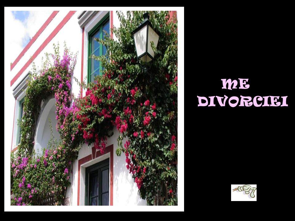 ME DIVORCIEI