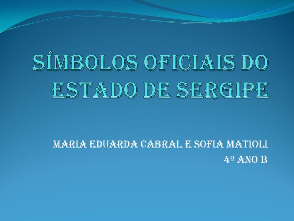 Maria Eduarda Cabral e Sofia matioli 4º ano b