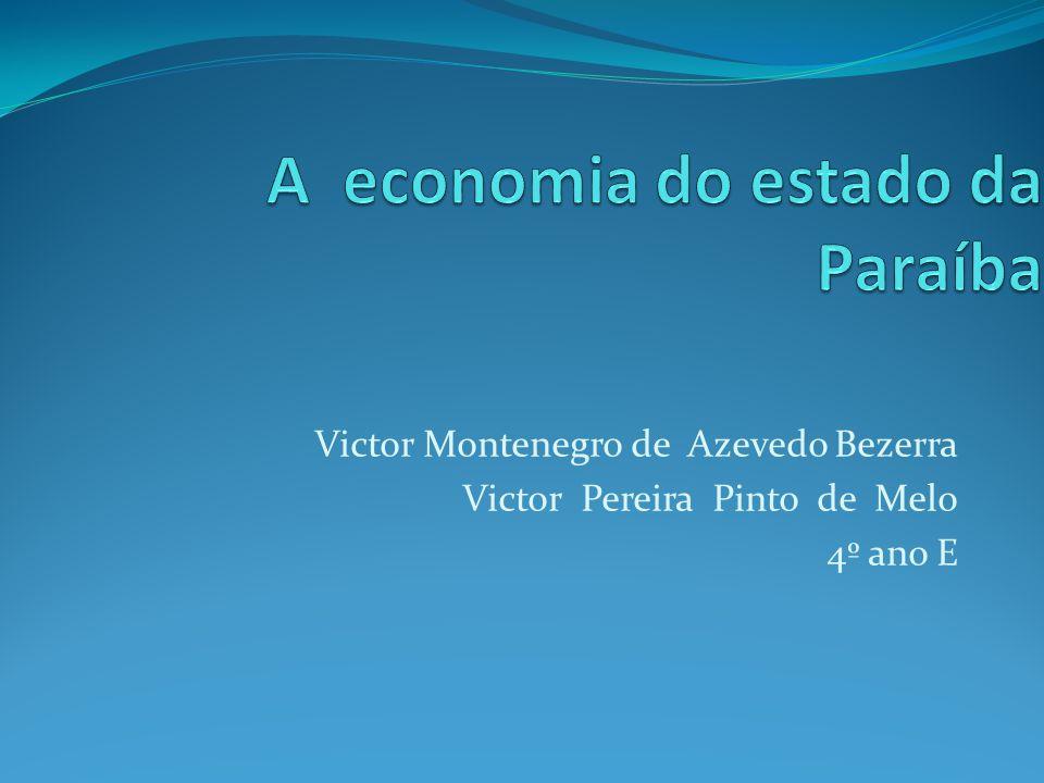 Em 2010, o Produto Interno Bruto (PIB) paraibano atingiu a marca de 31,9 bilhões de reais, correspondendo a 0,8% do PIB brasileiro.