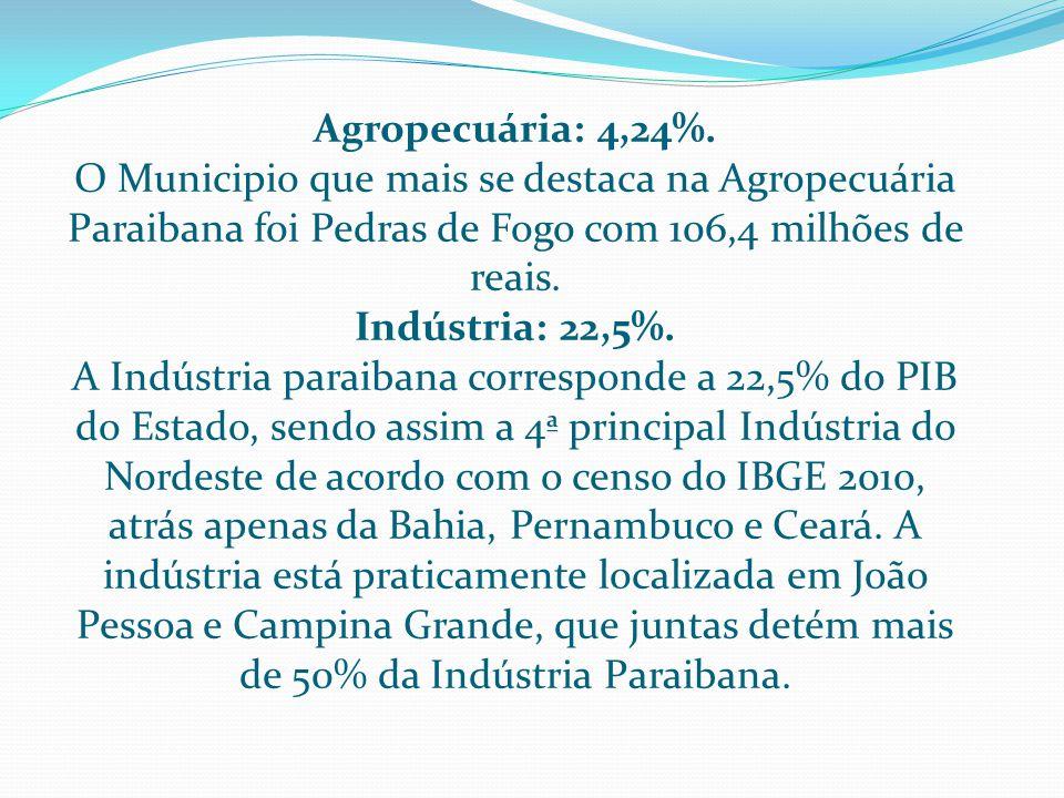 SETOR DE SERVIÇO O setor de serviços é responsável pela maior arrecadação de receitas no Estado.