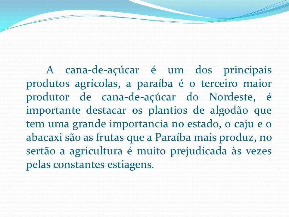 A cana-de-açúcar é um dos principais produtos agrícolas, a paraíba é o terceiro maior produtor de cana-de-açúcar do Nordeste, é importante destacar os