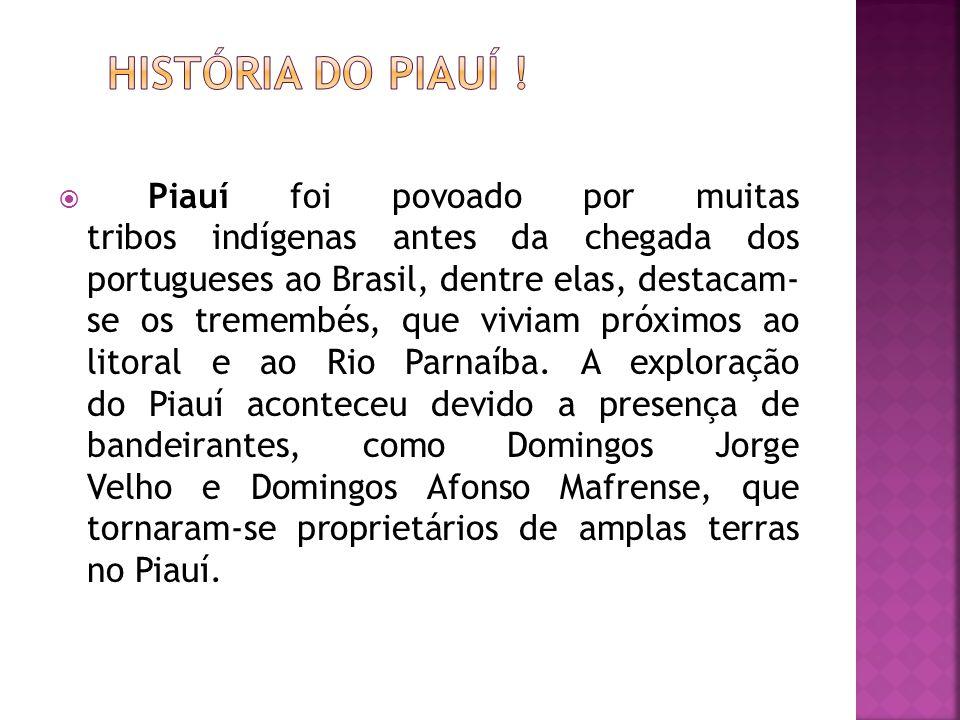  Piauí foi povoado por muitas tribos indígenas antes da chegada dos portugueses ao Brasil, dentre elas, destacam- se os tremembés, que viviam próximos ao litoral e ao Rio Parnaíba.