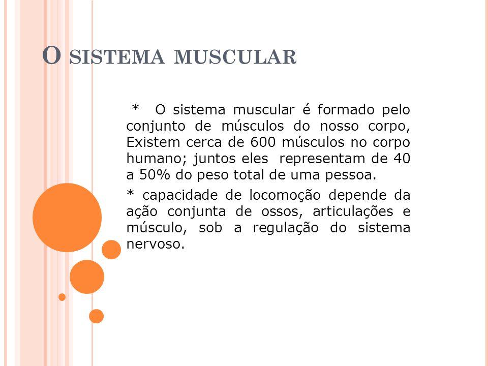 O SISTEMA MUSCULAR * O sistema muscular é formado pelo conjunto de músculos do nosso corpo, Existem cerca de 600 músculos no corpo humano; juntos eles