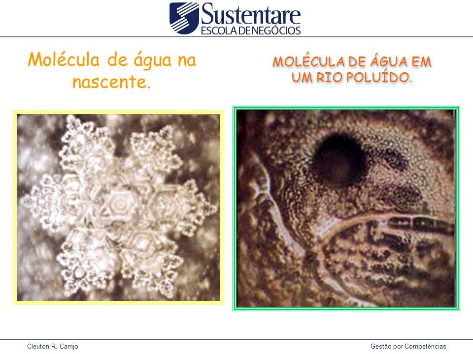 Cleuton R.Carrijo Gestão por Competências Molécula de água na nascente.
