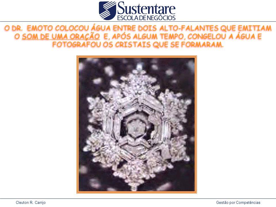Cleuton R.Carrijo Gestão por Competências O DR.