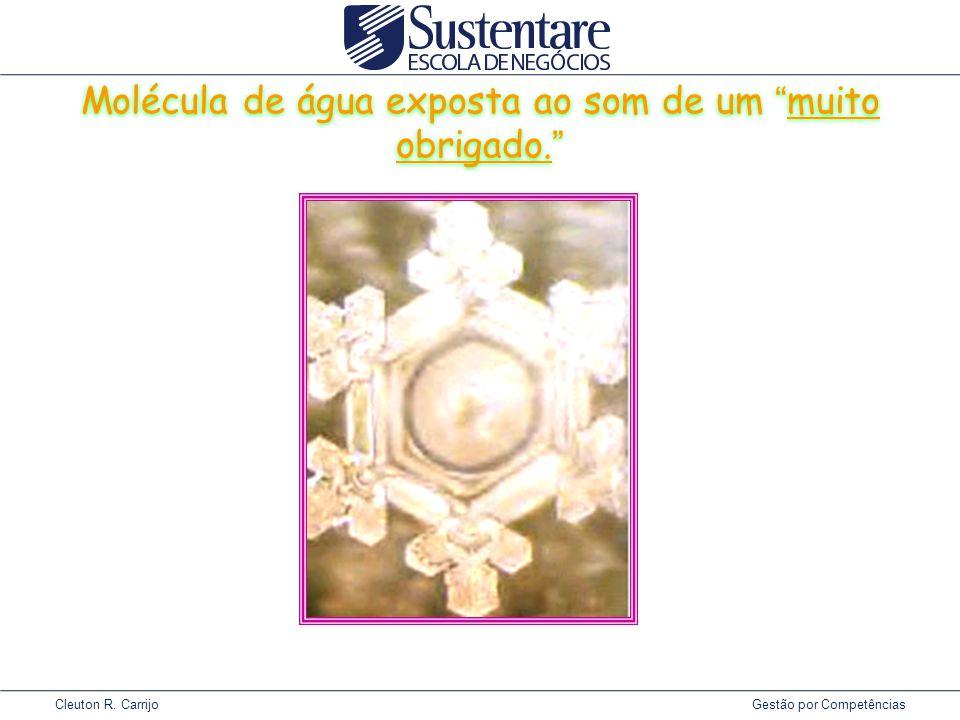 Cleuton R.Carrijo Gestão por Competências Molécula de água exposta ao som de um muito obrigado.