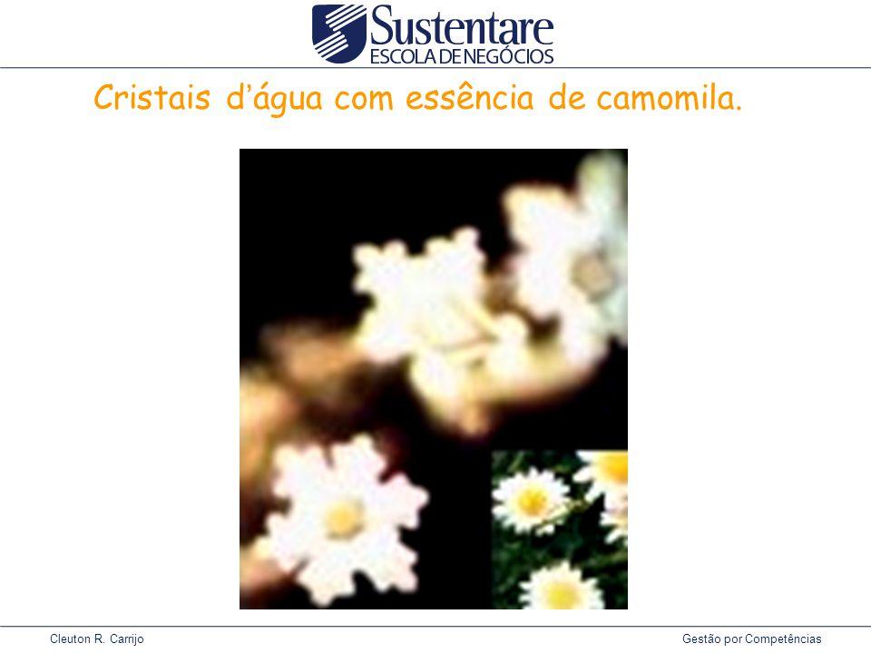 Cleuton R. Carrijo Gestão por Competências Cristais d ' água com essência de camomila.