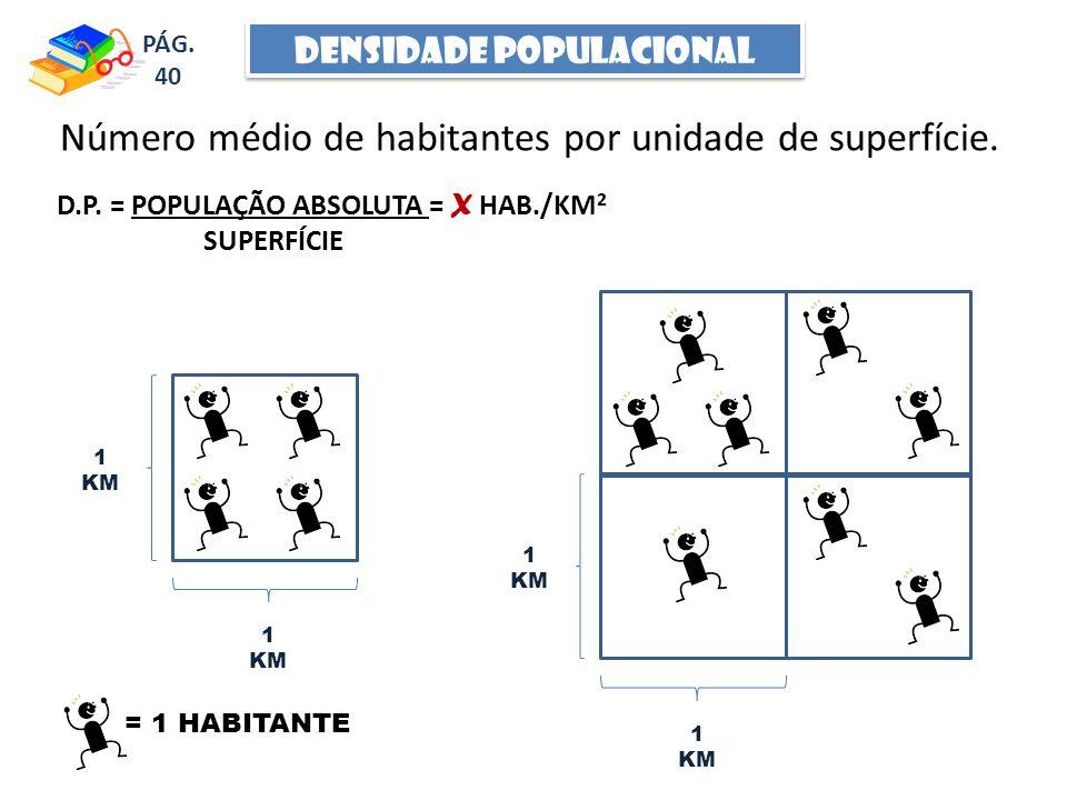 DENSIDADE POPULACIONAL Número médio de habitantes por unidade de superfície.