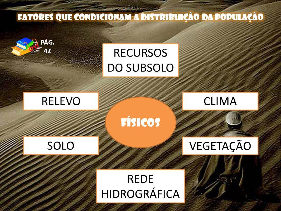 RELEVO SOLO CLIMA VEGETAÇÃO RECURSOS DO SUBSOLO FÍSICOS PÁG. 42 REDE HIDROGRÁFICA
