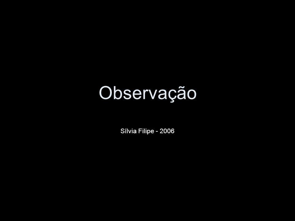 Observação Sílvia Filipe - 2006