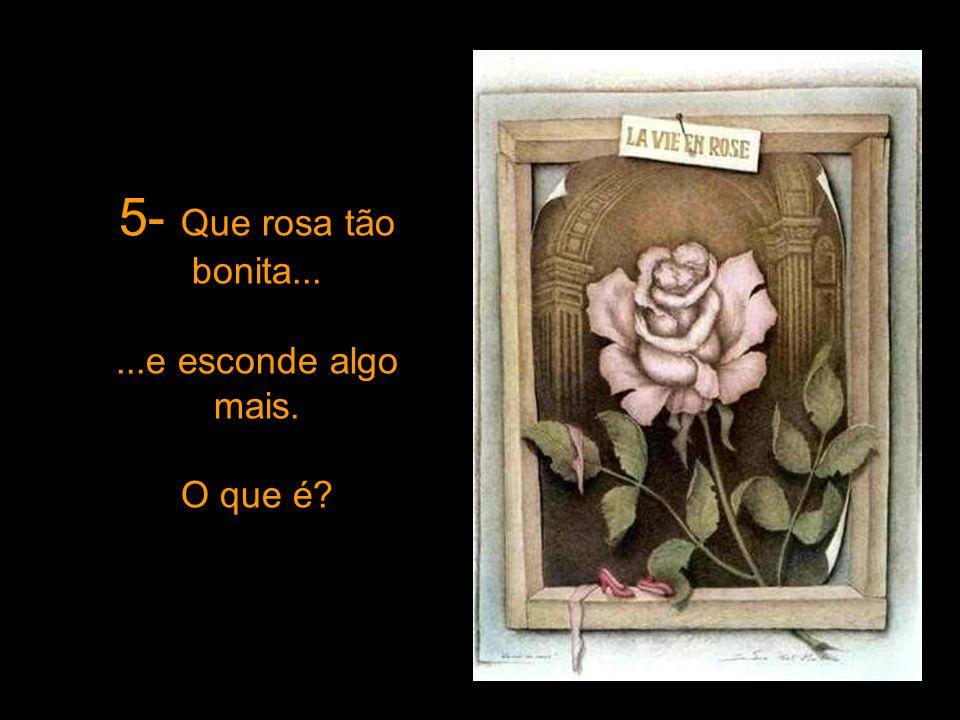 5- Que rosa tão bonita......e esconde algo mais. O que é?
