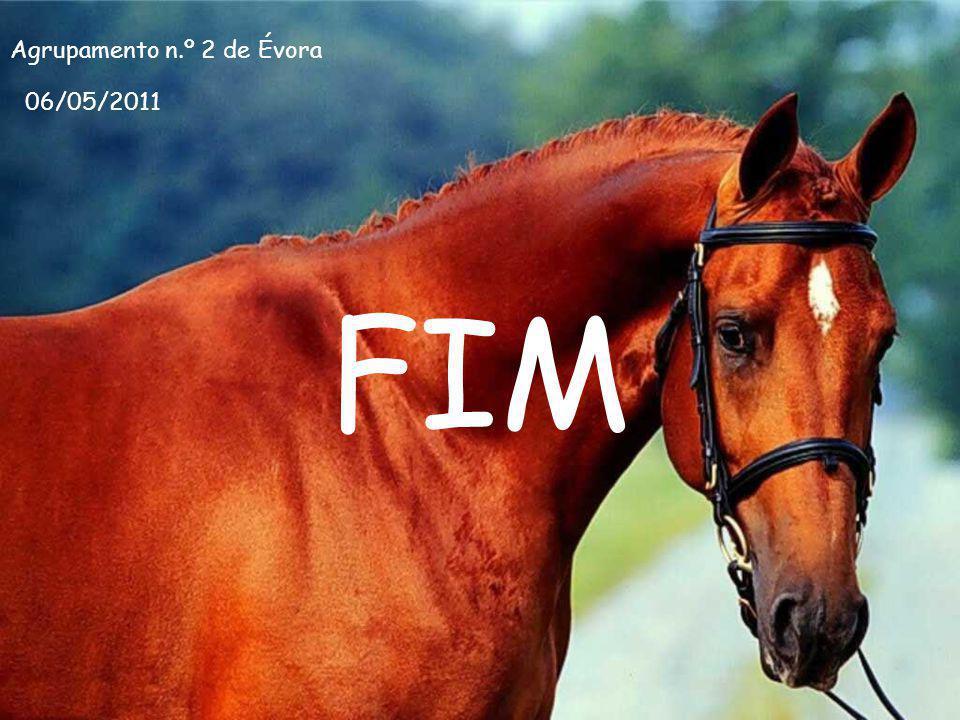 FIM Agrupamento n.º 2 de Évora 06/05/2011