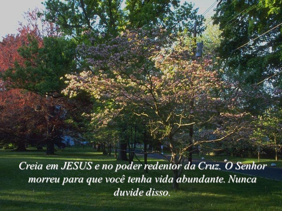 Creia em JESUS e no poder redentor da Cruz.O Senhor morreu para que você tenha vida abundante.