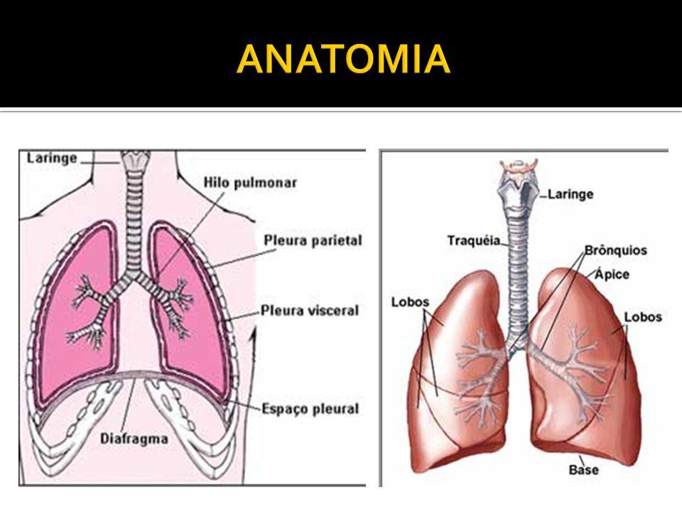  Apenas visualizações das imagens e avaliação radiológica não são capazes de definir o diagnóstico.