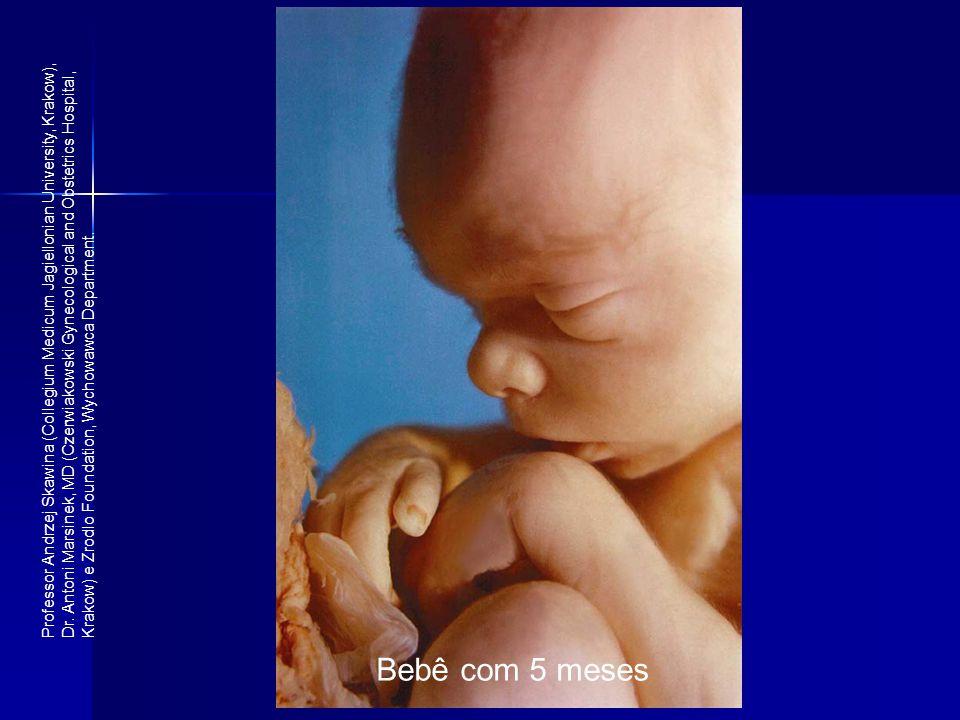 Bebê com 5 meses Professor Andrzej Skawina (Collegium Medicum Jagiellonian University, Krakow), Dr. Antoni Marsinek, MD (Czerwiakowski Gynecological a