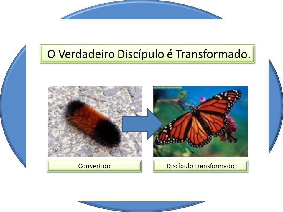 O Verdadeiro Discípulo é Transformado. Convertido Discípulo Transformado