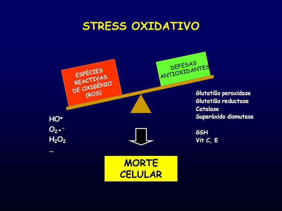 ESPÉCIES REACTIVAS DE OXIGÉNIO (ROS) DEFESAS ANTIOXIDANTES STRESS OXIDATIVO MORTE CELULAR Glutatião peroxidase Glutatião reductase Catalase Superóxido