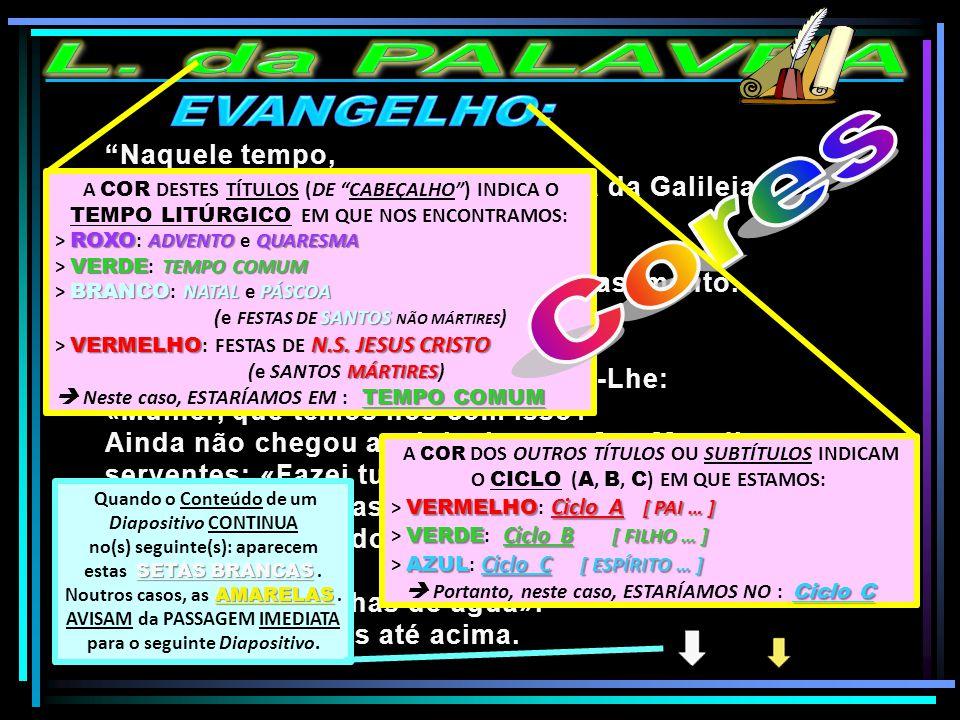 """""""Naquele tempo, realizou-se um casamento em Caná da Galileia e estava lá a Mãe de Jesus. Jesus e os seus discípulos foram também convidados para o cas"""