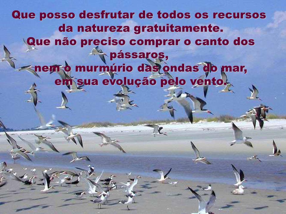 CRÉDITOS Formatação: Rayma Lima raylima@terra.com.br Figuras: Internet Fundo Musical: Just For You Ernesto Cortazar