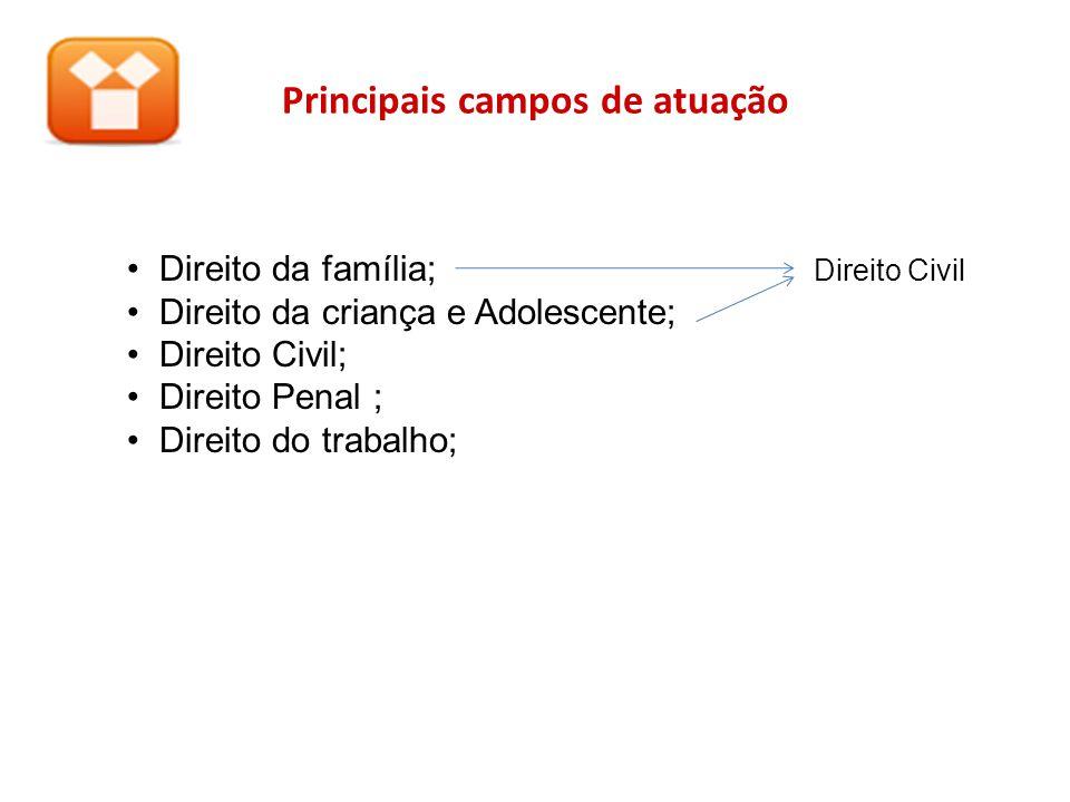Principais campos de atuação Direito da família; Direito Civil Direito da criança e Adolescente; Direito Civil; Direito Penal ; Direito do trabalho;