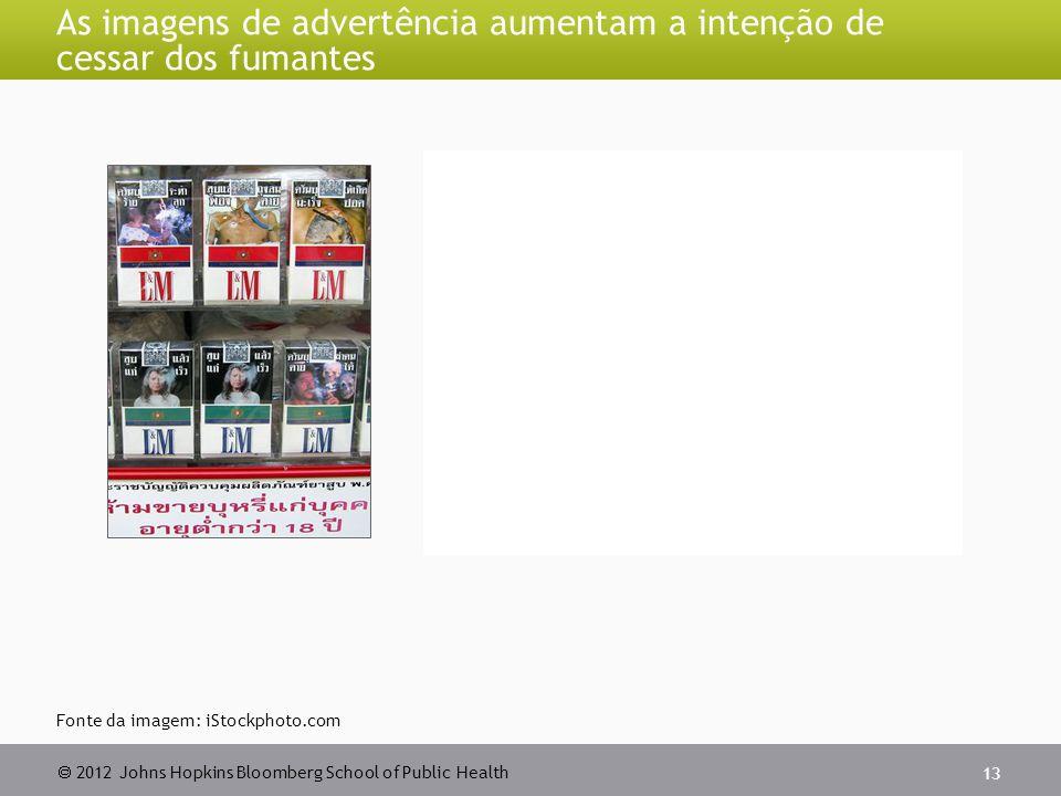  2012 Johns Hopkins Bloomberg School of Public Health As imagens de advertência aumentam a intenção de cessar dos fumantes 13 Fonte da imagem: iStock