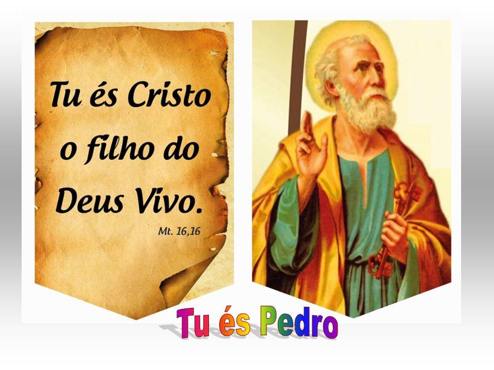 MISSIONÁRIOS DO VERBO DIVINO UMA FAMÍLIA PARA A MISSÃO VOCÊ CONHECE.