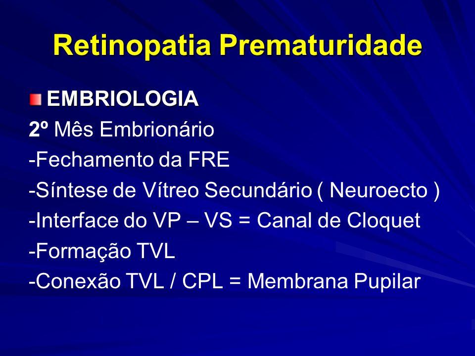 Retinopatia Prematuridade EMBRIOLOGIA 2º Mês Embrionário -Fechamento da FRE -Síntese de Vítreo Secundário ( Neuroecto ) -Interface do VP – VS = Canal de Cloquet -Formação TVL -Conexão TVL / CPL = Membrana Pupilar