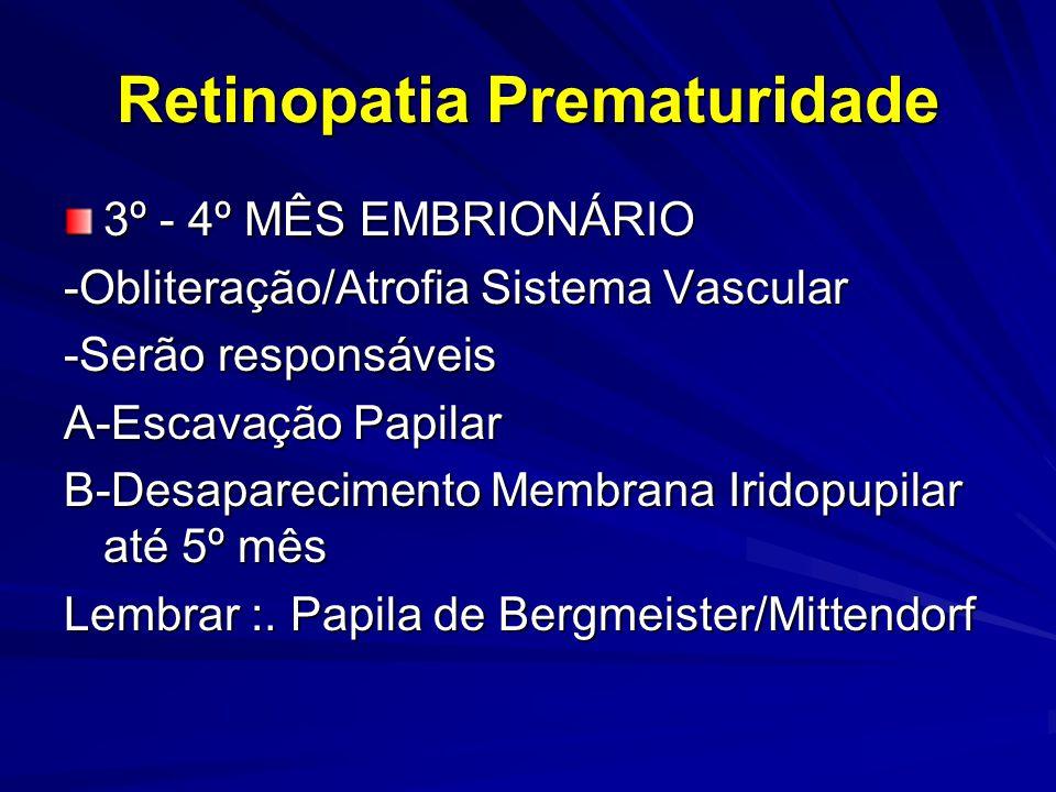 Retinopatia Prematuridade FATORES DE RISCO -IMATURIDADE RETINIANA( PESO E IG ) -OXIGÊNIO-TRANSFUSOES -ASFIXIA PERI NATAL -PERSISTÊNCIA CANAL ARTERIAL -HEMORRAGIA INTRAVENTRICULAR -SEPSE -FOTOTERAPIA – BILIRRUBINA=ANTIOXI