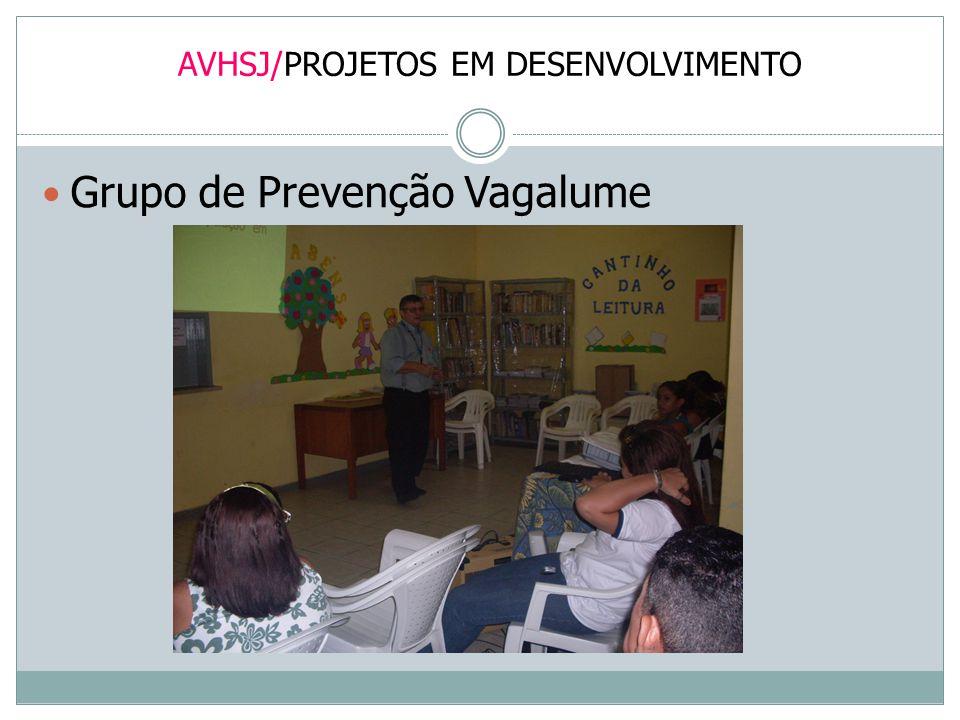AVHSJ/PROJETOS EM DESENVOLVIMENTO Grupo de Prevenção Vagalume