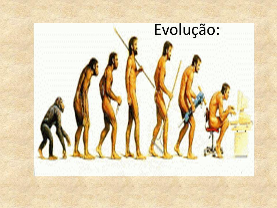 Evolução: