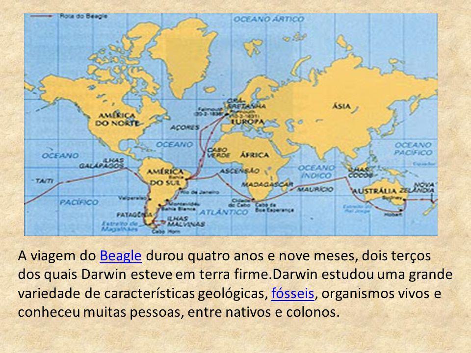A viagem do Beagle durou quatro anos e nove meses, dois terços dos quais Darwin esteve em terra firme.Darwin estudou uma grande variedade de caracterí