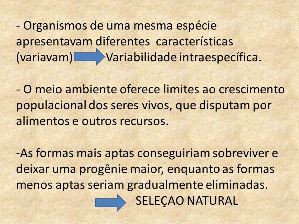 - Organismos de uma mesma espécie apresentavam diferentes características (variavam) Variabilidade intraespecífica. - O meio ambiente oferece limites
