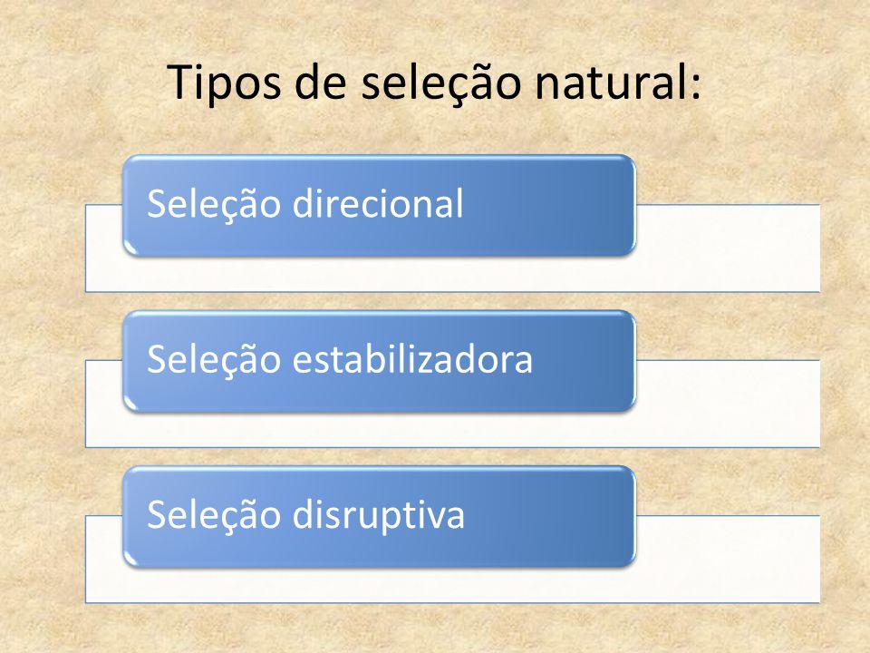 Tipos de seleção natural: Seleção direcionalSeleção estabilizadoraSeleção disruptiva