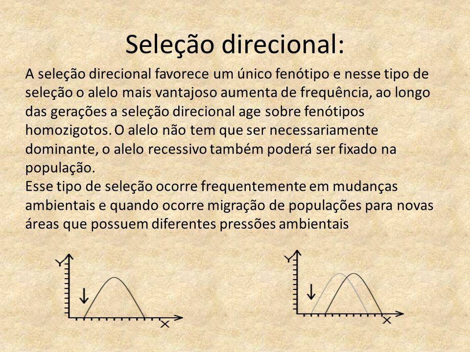 Seleção direcional: A seleção direcional favorece um único fenótipo e nesse tipo de seleção o alelo mais vantajoso aumenta de frequência, ao longo das