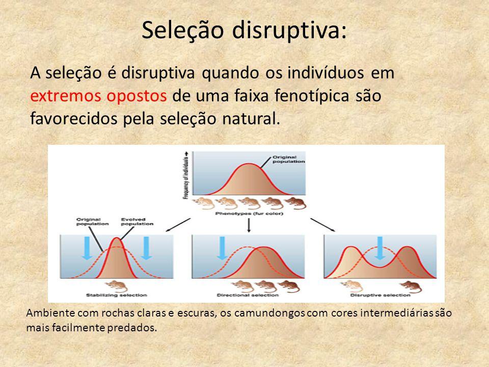 Seleção disruptiva: A seleção é disruptiva quando os indivíduos em extremos opostos de uma faixa fenotípica são favorecidos pela seleção natural. Ambi