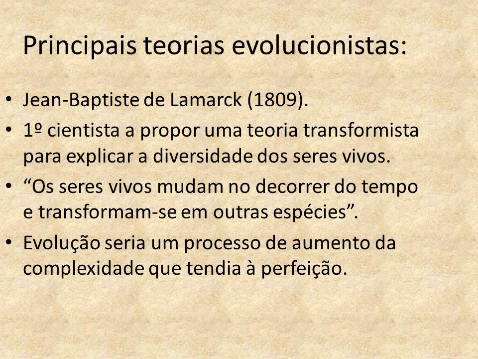Principais teorias evolucionistas: Jean-Baptiste de Lamarck (1809). 1º cientista a propor uma teoria transformista para explicar a diversidade dos ser