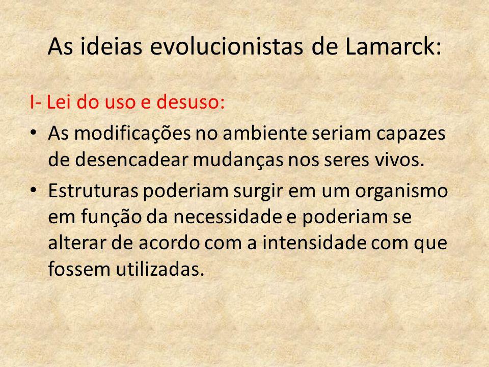 As ideias evolucionistas de Lamarck: I- Lei do uso e desuso: As modificações no ambiente seriam capazes de desencadear mudanças nos seres vivos. Estru