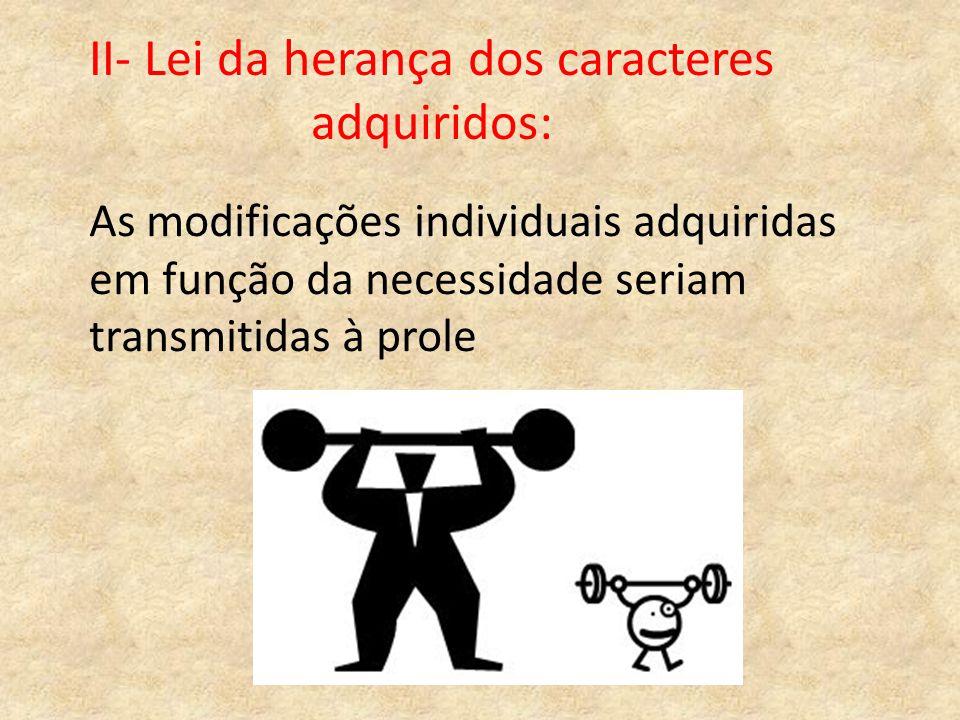II- Lei da herança dos caracteres adquiridos: As modificações individuais adquiridas em função da necessidade seriam transmitidas à prole