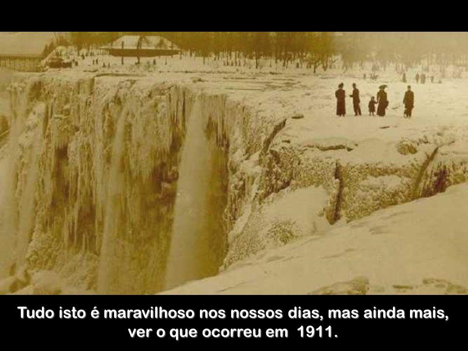 Floresta de hielo.