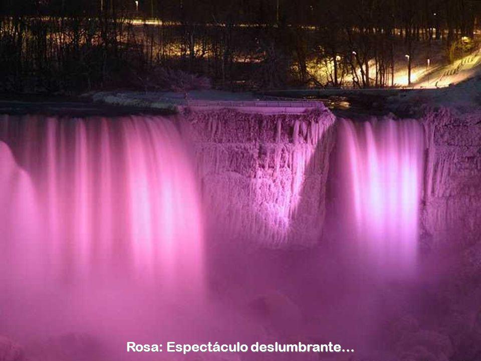 Rosa: Espectáculo deslumbrante…
