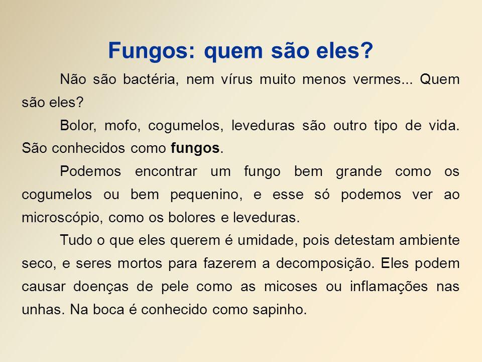 Fungos: quem são eles? Não são bactéria, nem vírus muito menos vermes... Quem são eles? Bolor, mofo, cogumelos, leveduras são outro tipo de vida. São
