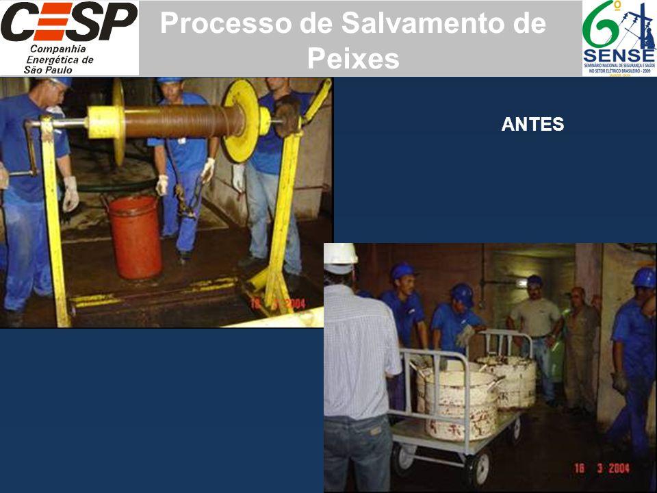 ANTES Processo de Salvamento de Peixes