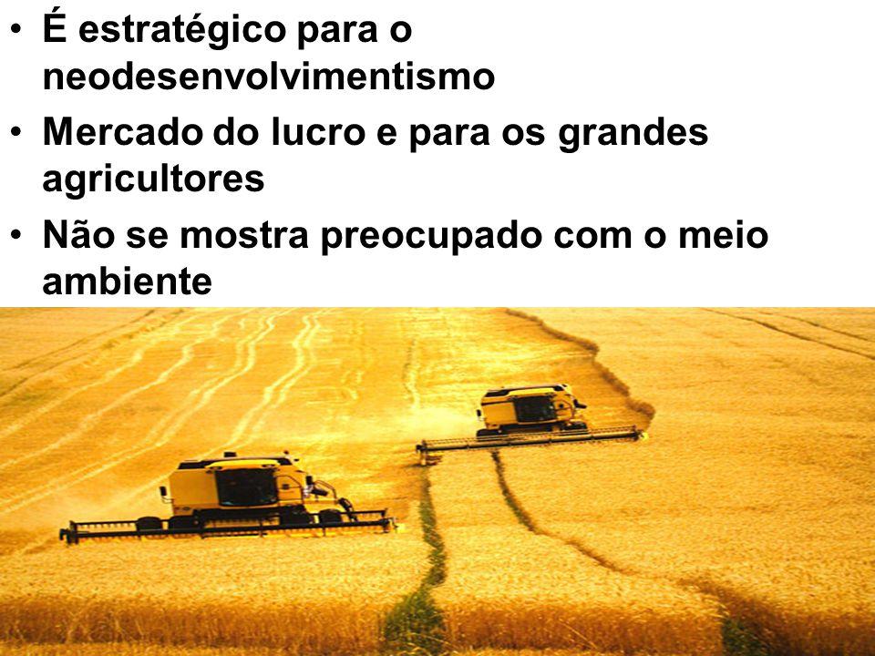 É estratégico para o neodesenvolvimentismo Mercado do lucro e para os grandes agricultores Não se mostra preocupado com o meio ambiente