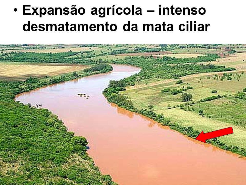 Expansão agrícola – intenso desmatamento da mata ciliar