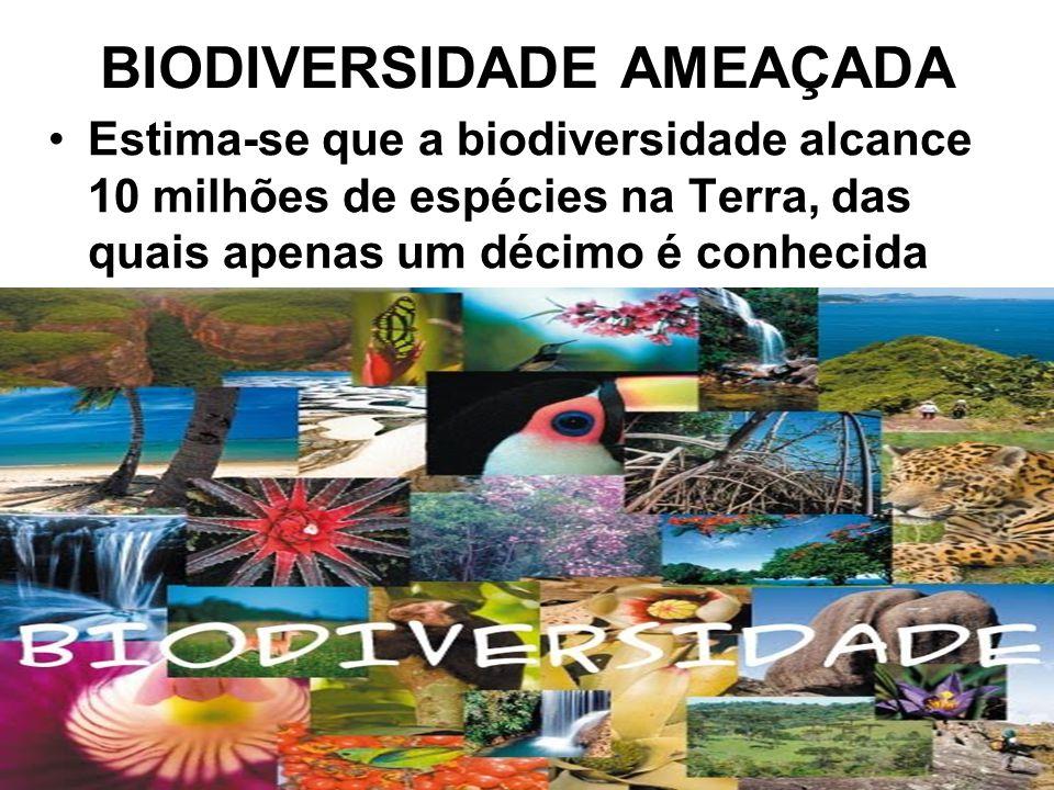 BIODIVERSIDADE AMEAÇADA Estima-se que a biodiversidade alcance 10 milhões de espécies na Terra, das quais apenas um décimo é conhecida